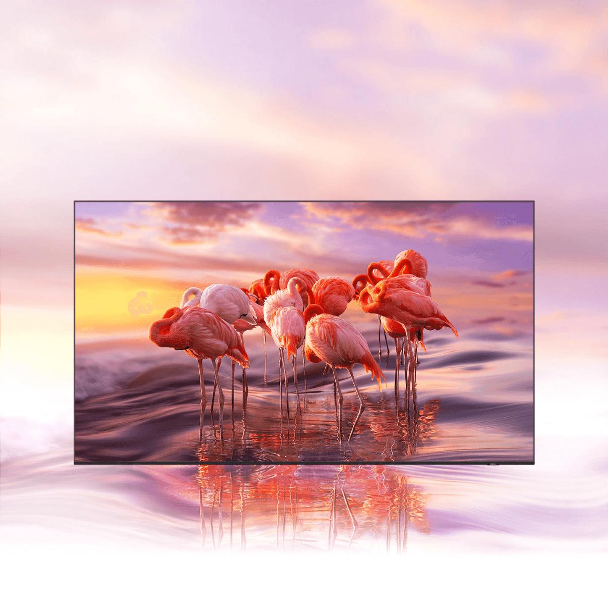 65 inch FLAT QLED 4K Resolutiontv Samsung QA65Q60AAUXZN online kuwait eureka